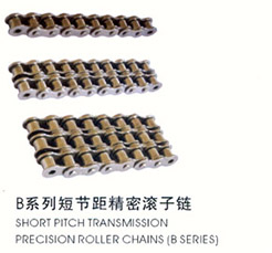 B series short pitch precision roller chain
